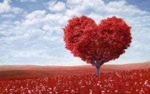 love-wallpapers-14