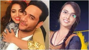 Arshi Khan, Vikas Gupta, big boss 2017