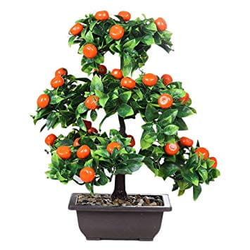Orange Plant Showpiece