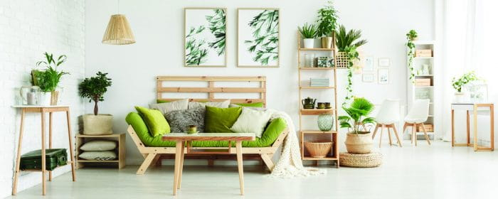New Decor Trends